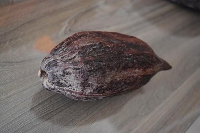 カカオの含有量によってチョコレートの種類が決まる!
